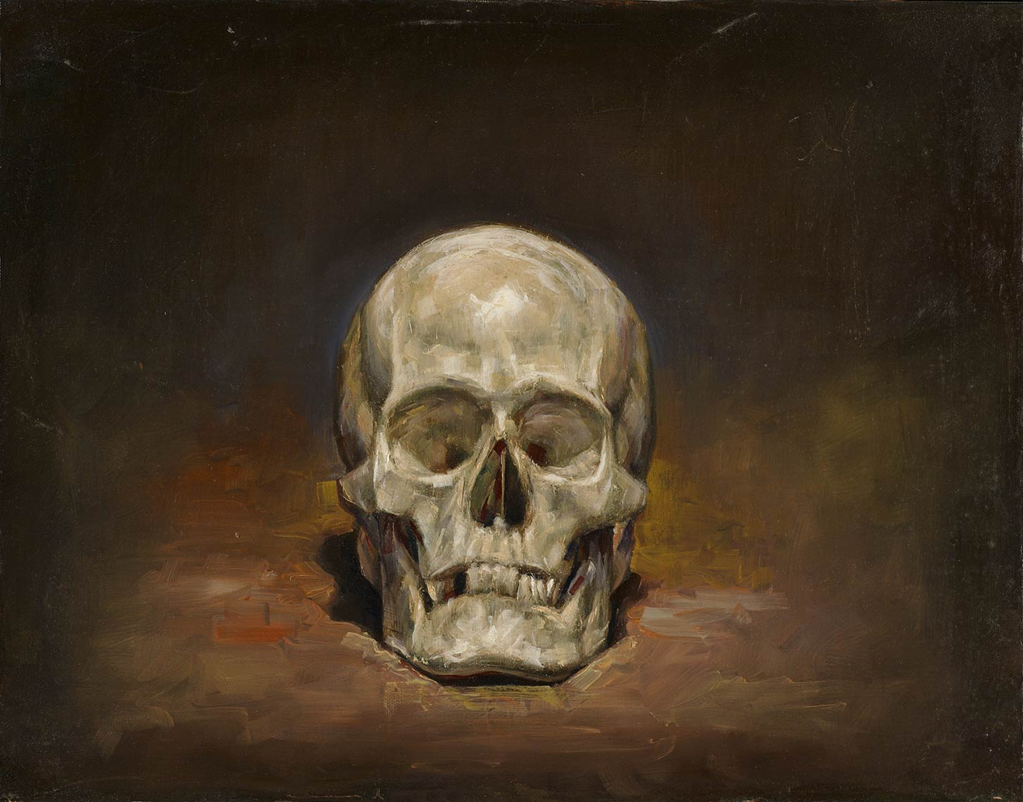 Skull_2009_oil-on-canvas_36x46_14x18_Private-Collection