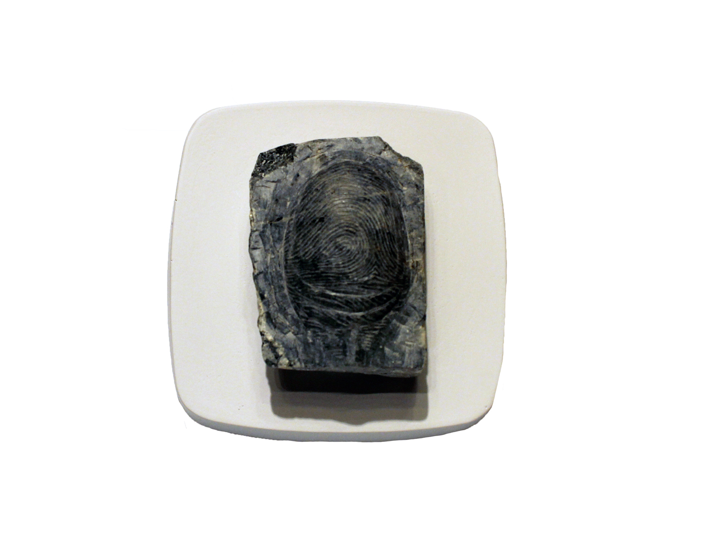 TheHandoftheArtistpositivethumbimpressionmoquette_2014_soapstone_6.5x8x4_2.5x3x1.5_Available